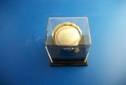 Golden Glove Ball Case - Single - Sports Memorabilia Display Case